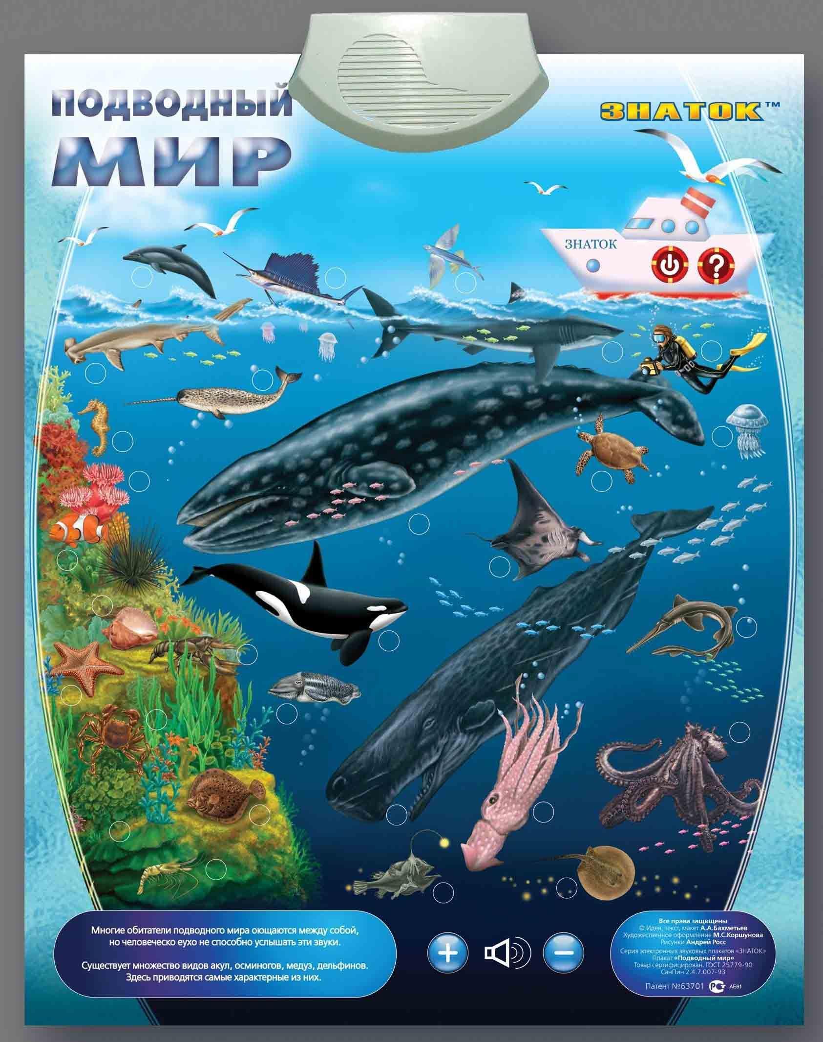 Картинка Электронный плакат Подводный мир