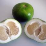 Разные фрукты для детей. Свойства свити.